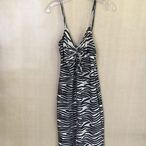 Zara Zebra Print Spaghetti Strap Dress